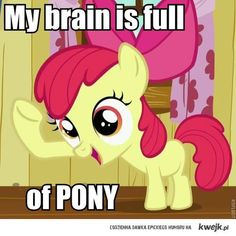 My brain is full of Pony! My little pony. friendship is magic Grande Grande Grande Lee .I'm going to have to get you a shirt with this on it! Apple Jack, Mlp Memes, Mlp Comics, Little Poney, Geek Out, My Little Pony Friendship, Fluttershy, Twilight Sparkle, Pinkie Pie