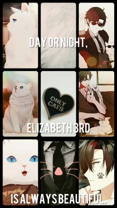 Mystic messenger aesthetic Elizebeth 3rd Collage (made by me)