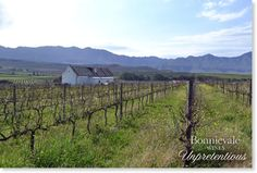 Win a weekend for 2 in Bonnievale 2 In, Wines, Cape, Beautiful Places, To Go, Outdoor, Inspiration, Mantle, Outdoors
