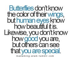 butterflies. self worth.