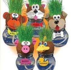 GERMINANDO SEMILLAS  CON  MISTER GRASS OBJETIVO  Observar el proceso de germinación de una planta a través de la elaboración de ...