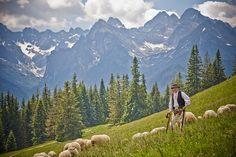 High Tatras from Polish side. Highest peak on right side is Rysy High Tatras, Tatra Mountains, Nature Adventure, Bratislava, Places To Visit, World, Travel, Moon Shine, Polish