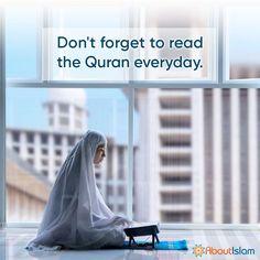 Read the Quran 📗