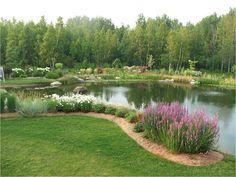 La piscine naturelle qui ressemble à s'y méprendre à un étang. On aime !