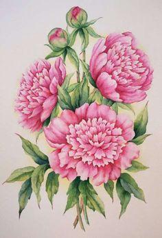 Gallery.ru / Фото #3 - акварель - ninmix Vintage Flower Prints, Art Vintage, Vintage Flowers, Floral Prints, Illustration Botanique, Botanical Illustration, Botanical Flowers, Botanical Prints, Watercolor Flowers
