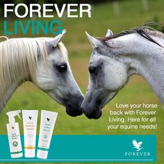 Shop now with http://wu.to/IefZH4 and Find the Balance with Aloe that Matters.  #horse #equine