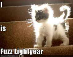 I is Fuzz Lightyear  @jknickerson