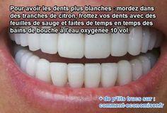 Dents blanches grâce à du citron, de la sauge et de l'eau oxygénée