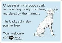 Family security system! I need to photoshop a pic of my favorite pooch, Buddy the ferociously luvable Miniature Schnauzer, onto this!