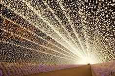 三重県「なばなの里」のウィンターイルミネーションより「光のトンネル(回廊)」