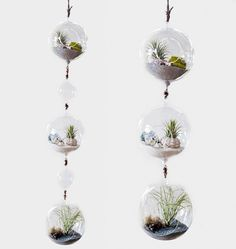 Handmade Custom terrariums for your event! by Hammers and Heels | CustomMade.com