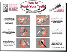 Importance of Brushing the Teeth