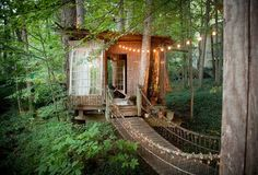 Of course there's a treehouse!