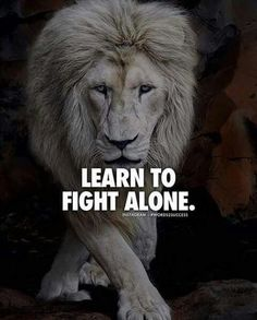 Then you gain the wisdom to fight for what is right and who to surround yourself with. You can fight alone, but with the right ones you don't got to. Words Quotes, Me Quotes, Qoutes, Motivational Quotes, Inspirational Quotes, Lion Quotes, Sad Sayings, Great Quotes, Quotes To Live By