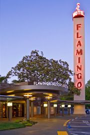 Flamingo Hotel - Santa Rosa, CA  In 1959, the Flamingo became renowned by Hollywood as the place to stay north of the Bay. Movie stars like Jayne Mansfield were often found sunning themselves by the pool.  It is still in business today.