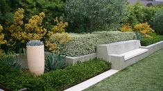 Rather than being used for marking a boundary or backing a border, the blocks of hedges here are building blocks of the design. On a practical basis, creating controlled sections of hedging within borders, instead of having traditional plant groupings, reduces the amount of maintenance to almost zero.