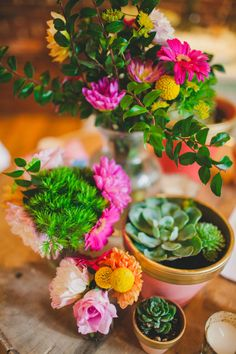 mix of potted succulents and flowers - photo by Shannon Collins Photography http://ruffledblog.com/maas-building-philadelphia-wedding