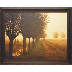 Found it at Wayfair - 'Misty Morning' by Lars Van DeGoor Framed Photographic Print