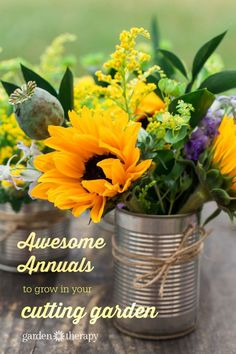 A seed-grown, annual cutting garden couldn't be more low maintenance! Simply grab a packet or two of seeds and toss them in the soil. As they grow, cut, move, and remove the flowers as it develops and blooms. This is a great project for a beginner gardener, or someone looking to fill in a large space inexpensively. See how it's done (the easy way) and get a list of the best annuals to grow in a cutting garden.