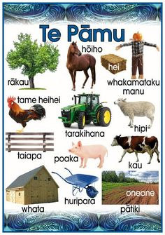 "Maori Resources – Tagged ""Te Reo"" – Page 2 – Blackboard Jungle Creative Teaching, Teaching Tools, Teaching Resources, Childhood Education, Kids Education, Maori Words, Holiday Program, Maori Designs, Primary Teaching"