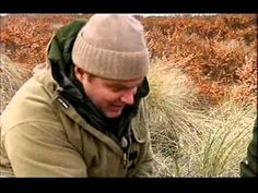 cool *Ray Mears* Wild Food part 2