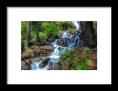Wall Art For Sale, Hanging Wire, Fine Art America, Waterfall, Framed Prints, Wood, Plants, Outdoor, Outdoors