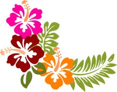 Image result for hibiscus clipart