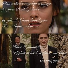 A thousand years, Flightless bird