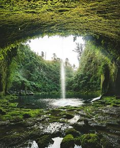 "Tauranga, New Zealand | Tauranga is known as a beautiful harbor city on the Bay of Plenty, and a quick trip outside the city lands you in the stunning Omanawa Falls, also known as ""Secret Falls"". Cruise with Royal Caribbean to Tauranga and start your adventure. (Photo: Talman M)"