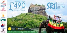 Want to ride on Sri Lankan elephant give us a call we can arrange a memorable holidays on your life time!? 0203 384 0162