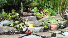 See a variety of miniature garden ideas for container gardening or for planting a miniature fairy garden right in the garden bed. From your favorite miniatur...
