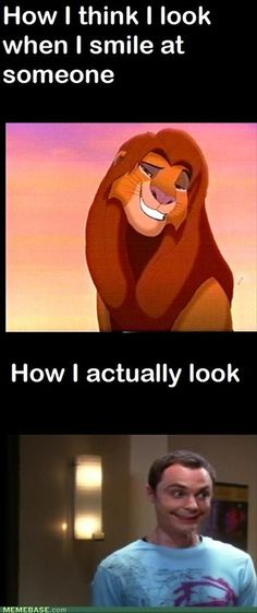 how i think i look when i smile, how i really look, sheldon cooper, lion king