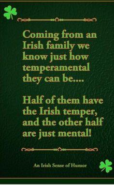 Irish truth More bwahahahaha! Irish Jokes, Irish Humor, Irish Proverbs, Proverbs Quotes, Irish American, American Women, American Art, American History, Irish Girls