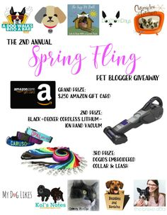 Spring Fling Pet Blogger Giveaway - Win a $250 Amazon Gift Card! More prizes for dogs and cats from Black+Decker and dogIDs.