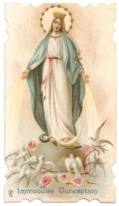 Virgin Mary with Pink Roses & Doves Antique French Catholic