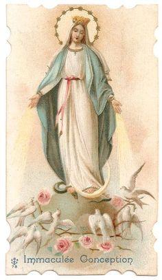 Virgin Mary ~ French Catholic