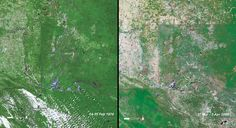 Deforestation, Mexico.  Guatemala-Mexico border. Left: February 14-15, 1974. Right: March 27-April 3, 2000. Most of the Guatemalan side remains closed canopy forest thanks in part to the protected status of the Sierra de Lacondon and Laguna del Tigre National Parks. On the Mexican side, much of the forest was converted to cropland or pasture between 1974 and 2000 in response to a larger and increasing population, creating a stark difference at the borderline.