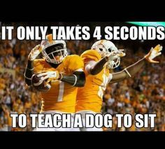 Embedded image | University of Tennessee | Pinterest