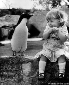 cute kid + cute penguin= precious.