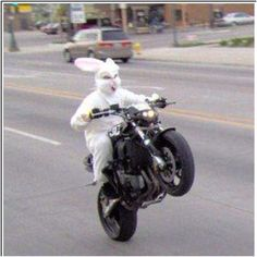 Watch out for the Easter bunny