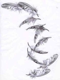 falling feather drawings - Google Search