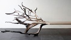 This Bench Morphs Into The Branch It Was Carved From