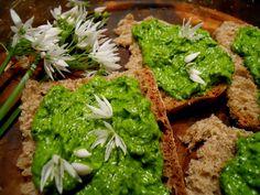GREAT COUNTRY HOUSE salsa aglio ursino