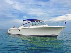 Chris Craft did 'em right in the 60's. Commander Sportsman 30 looking good!
