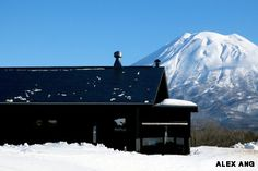 This Japanese resort town has become a world-class winter destination with a fantastic food scene to match