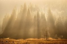 Bavarian rays  Landscapes photo by Rericha http://rarme.com/?F9gZi