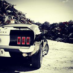 Moto Art: Ford Mustang