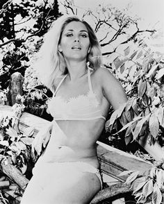 British Classic Bombshell: 45 Glamorous Photos of Alexandra Bastedo in the and ~ vintage everyday British Actresses, Actors & Actresses, Photography Movies, Fleet Street, Thing 1, Old Movie Stars, Got The Look, Most Beautiful Women, Beautiful Celebrities