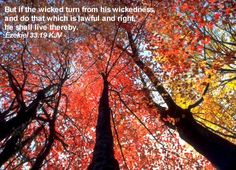 But if the wicked turn from his wickedness, and do that which is lawful and right, he shall live thereby. Ezekiel 33:19