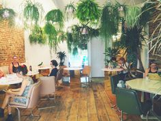 Palm Vaults Hackney Coffee Shop